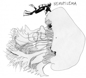 nemopelima-700x640